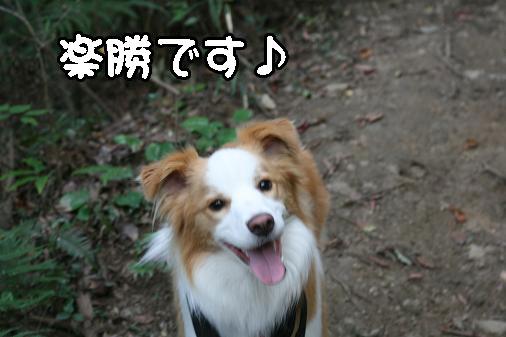 IMG_4994.jpg