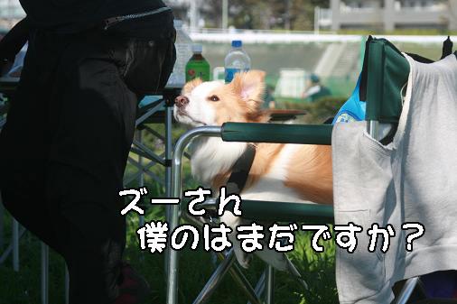 IMG_5330.jpg