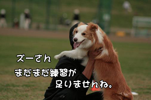 IMG_5368.jpg