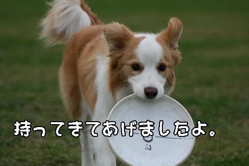 IMG_5403.jpg