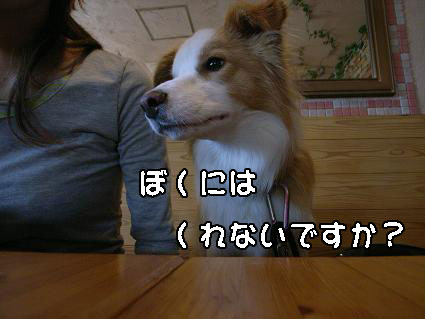 R0018378.jpg