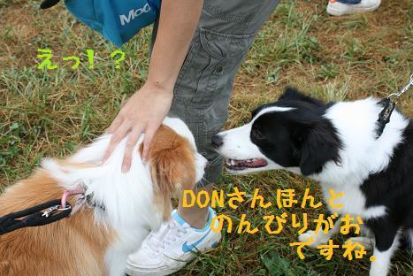IMG_4318.jpg