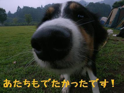 R0017803.jpg