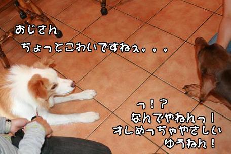 IMG_5218.jpg