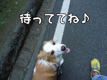 R0017924.jpg