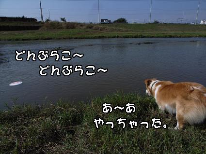 R0018516.jpg